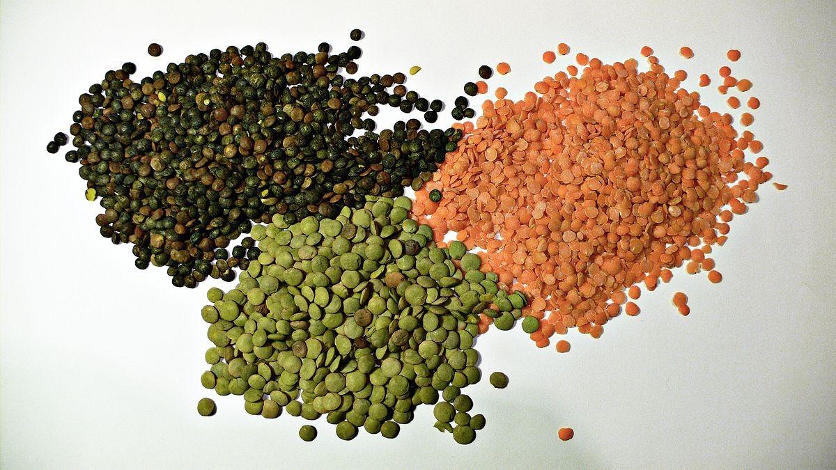 تصویر از انواع مواد غذایی مزاج و مصلح آنها – حبوبات