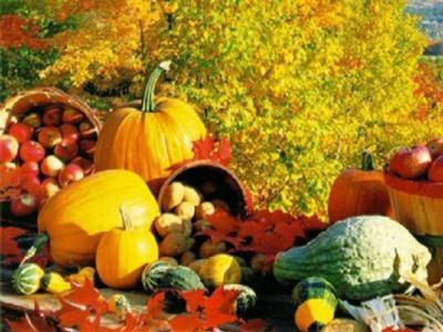 تصویر از غذاهایی که در فصل پاییز نباید مصرف کرد/ توصیههایی برای بهبود سرماخوردگی